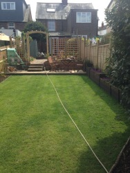Arguably the best the lawn has looked!